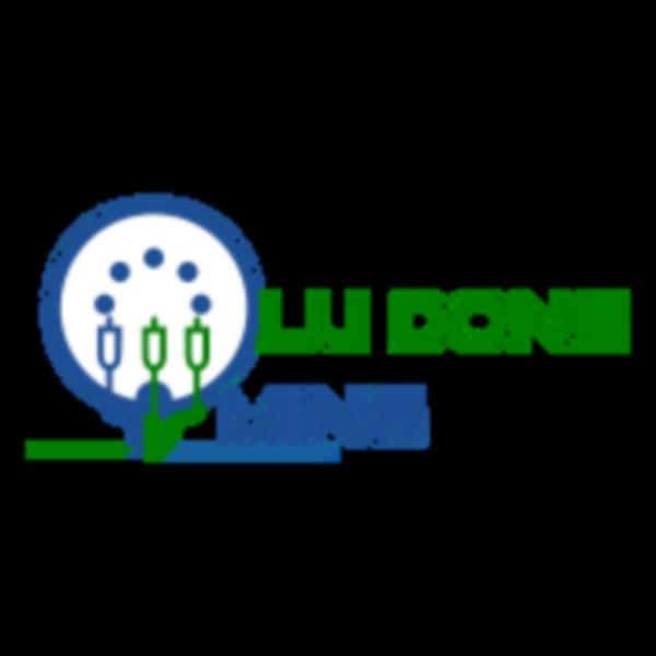 Lu Dong Ming